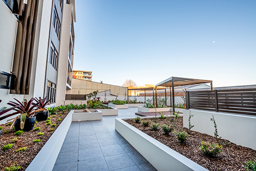 Photo of Parry Grande residential development landscaping. Copyright Mars Building.